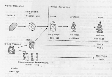radiocarbon dating stone tools Carbon dating stone you've got the right ideathe radiocarbon dating way archaeologists date stone tools and the like is through carbon radiocarbon dating archaeology dating stone their contextso, for example, if a stone tool is found.